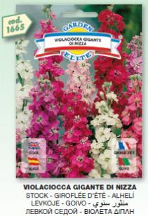 fiori10_r1_c31.png