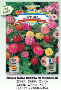 fiori11_r2_c21.png