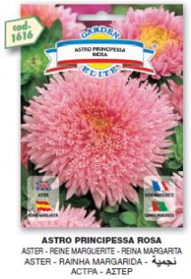 fiori1_r3_c21.png