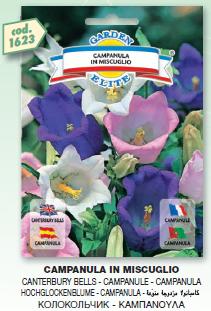 fiori3_r1_c11.png
