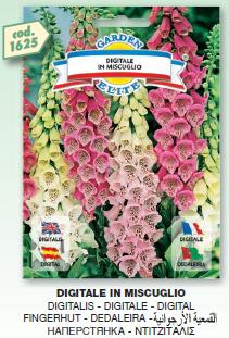fiori4_r1_c11.png