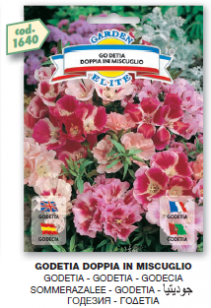 fiori5_r3_c21.png