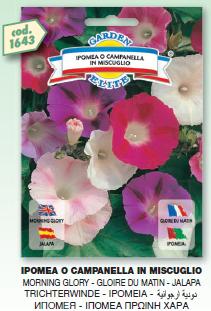 fiori6_r1_c11.png