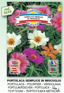 fiori8_r1_c21.png