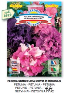 fiorigolden1_r3_c31.png