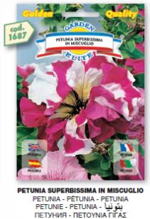 fiorigolden1_r3_c41.png